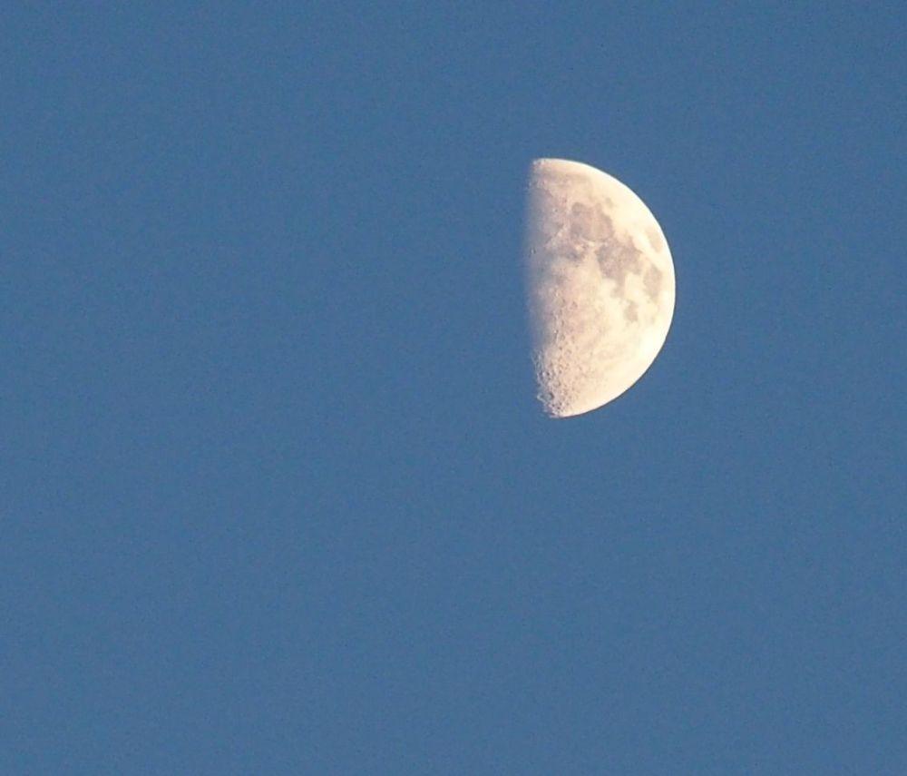 Half Moon (2/4)