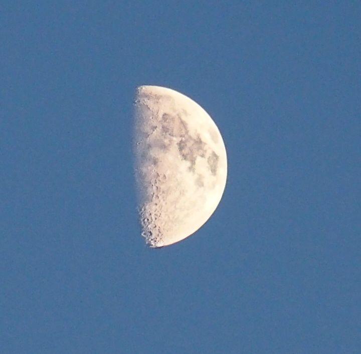 Half Moon (1/4)