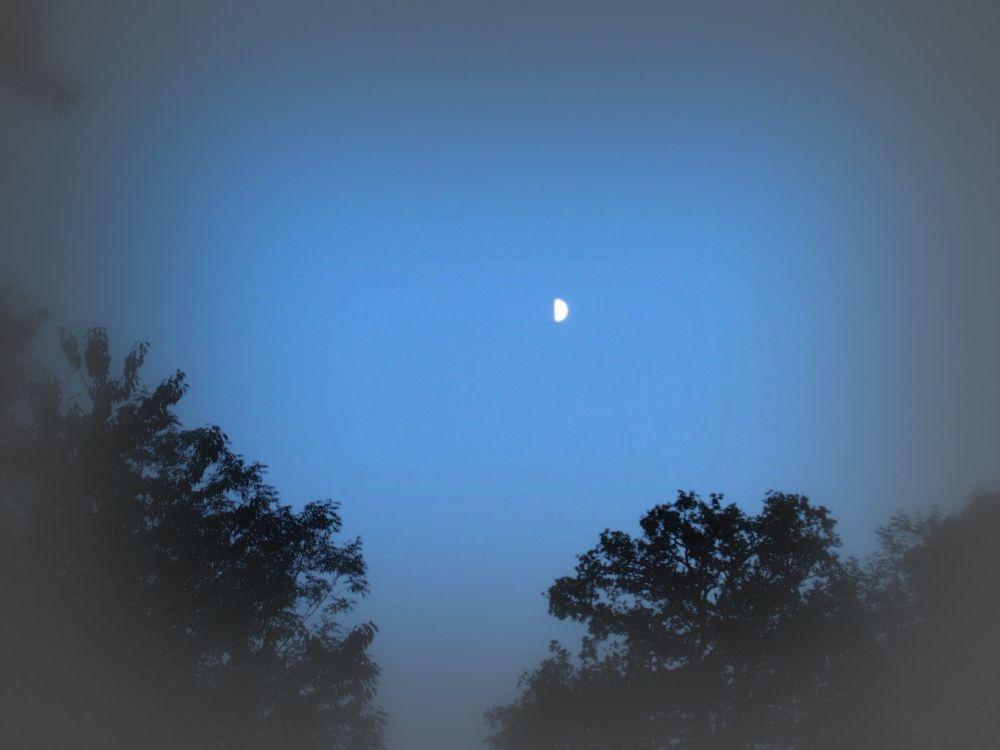 Half Moon (3/4)