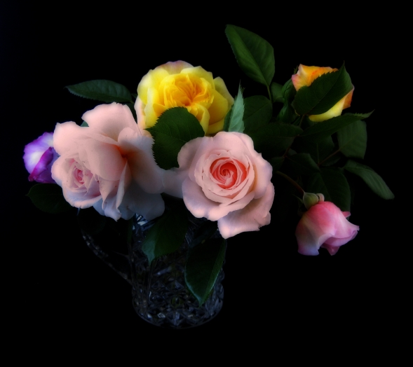 Boquet of Roses