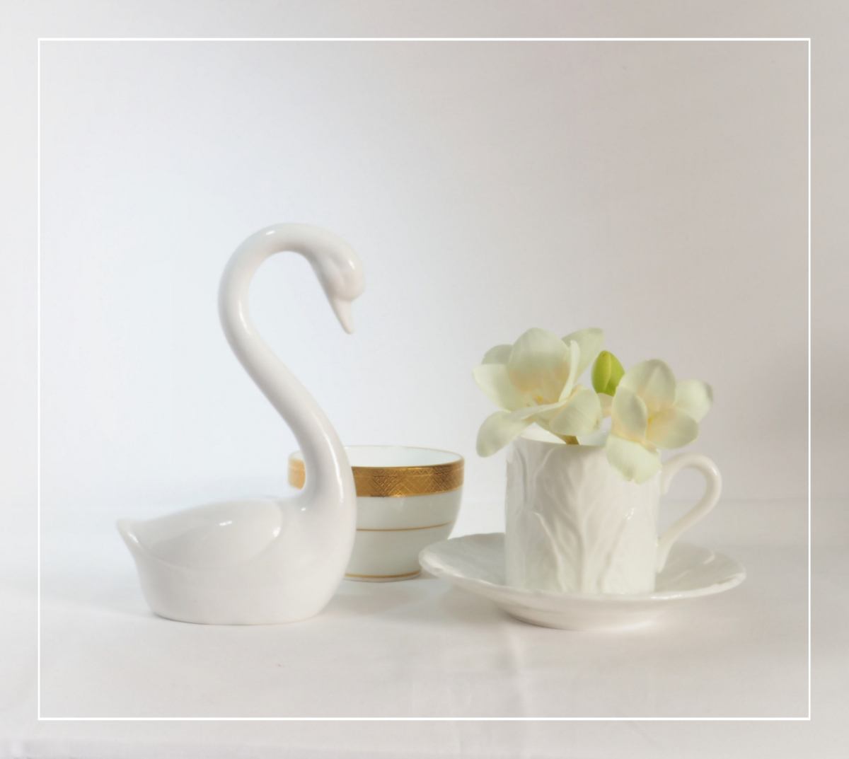 Still Life with Swan