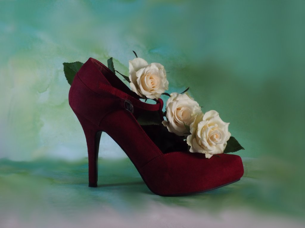 Shoe and Roses